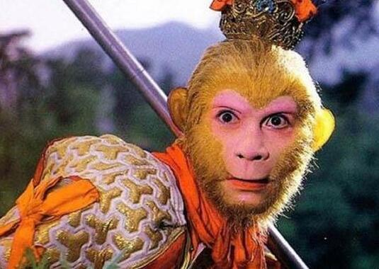 這些年多款猴哥上線