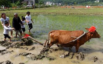 鄉村旅遊文化節上體驗農耕文化