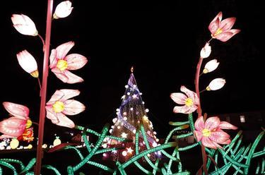 第二屆紐約花燈遊園會開幕