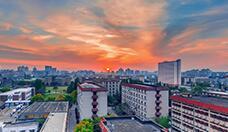"""上海财经大学多措并举 在疫情""""大考""""中锤炼提升治理能力"""