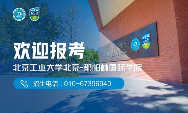 北京工業大學—都柏林學院2020年計劃招生330人
