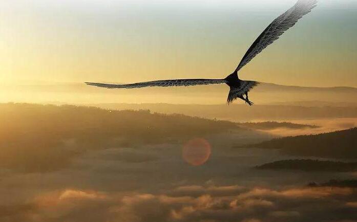 取得研究成果800余项 大学牵手中学放飞创新雏鹰
