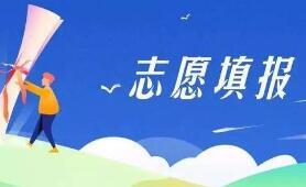 北京市2020年高招模擬志願將網上填報
