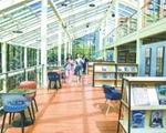 沐浴阳光,畅游书海 武汉一所高校建起超美玻璃书屋