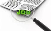 受訪應屆生求職選擇更多元 穩定的工作、靈活就業和新興領域都備受青睞